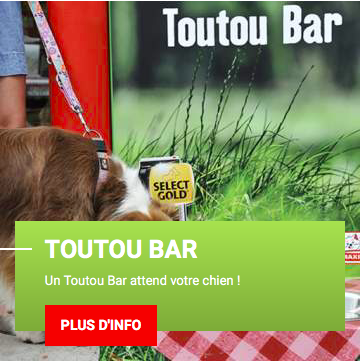 video-retail-campagne-maxi-zoo-Elements-Groupe